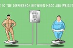 Difference Between Weight Mass Volume and Density