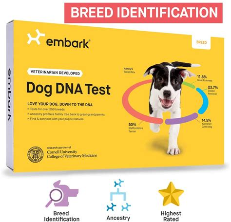 Dog Dna Test Reviews: Wisdom Panel, Dna My Dog, And Embark.