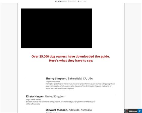 [pdf] Dog Owners Desperately Want To Stop This Behavior .