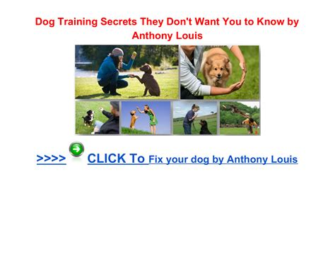@ Dog Training  Truth About Dog Training  Dog Training Secrets They Don T Want You To Know About.