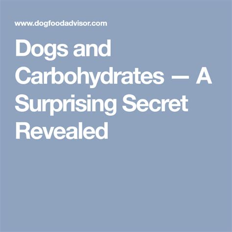 Dogs And Carbohydrates - A Surprising Secret Revealed.