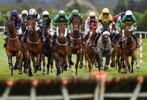 Dons Daily Tips Review Don Johnson Horse Racing Tips.