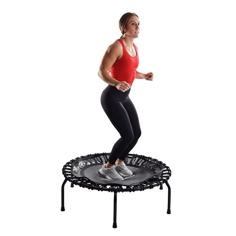 [click]exercise Equipment - Home Fitness  Stamina Products.