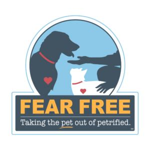 Fear Free Pets - Taking The Pet Out Of Petrified.