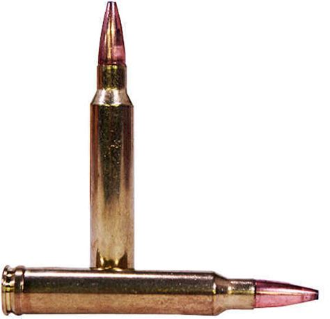Federal Cartridge 300 Winchester Magnum 180gr Fusion Per 20 F300wfs3 Ammunition Unboxing.