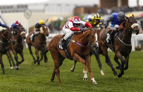 Free Horse Racing Tips & Best Bets - Just Horse Racing.
