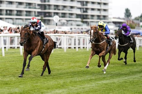 Free Horse Racing Tips, Sports Betting Tips & Horse Racing Betting.