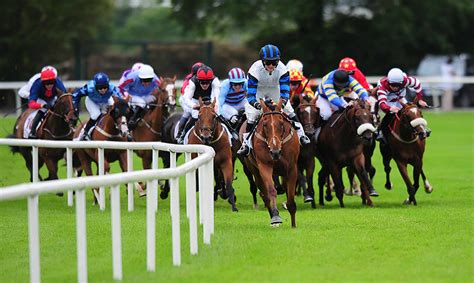 Free Daily Racing Tips, Previewing Irish Racing - Provided By Horse.