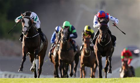 [pdf] Horse Registration - Racing Australia.