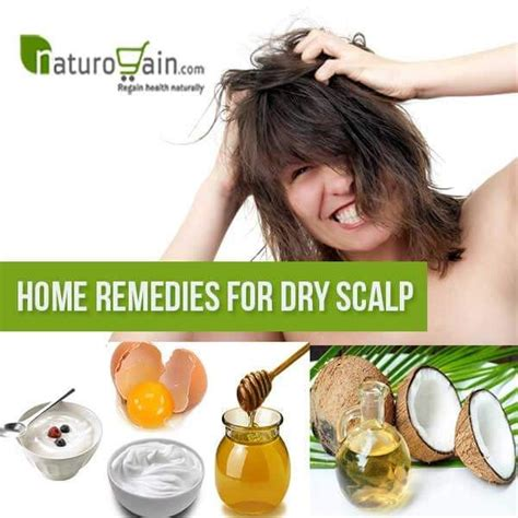 [click]home Remedies For Itchy Scalp Oils  Diy Home Remedies.