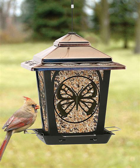 Hopper Bird Feeder Design