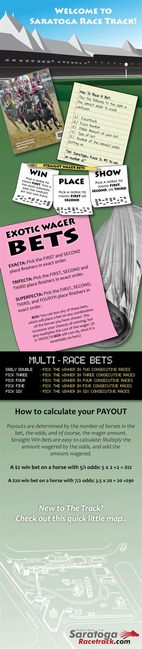 Horse Betting Basics: How To Bet At The Racetrack Infographic.