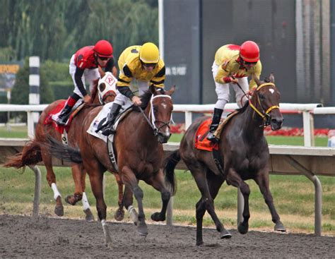Horse Race Betting - Tips For Becoming A Betting Master - Thrillist.