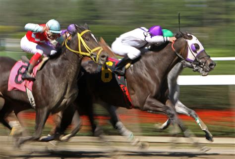 Horse Racing - Best Betting Sites.