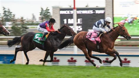 Horse Racing Betting In Canada Canadasportsbetting.