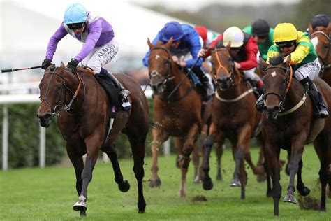 Horse Racing Handicapping Picks, Tips, Results - Horse Betting.