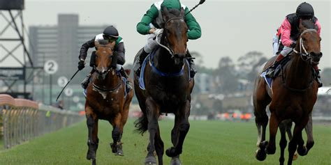 Horse Racing Pro: Pro Horse Racing Tips Uk Horse Racing Tipsters.