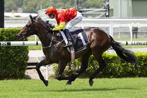 Horseracing - Fixed Odds Bets On Local And International Horse.