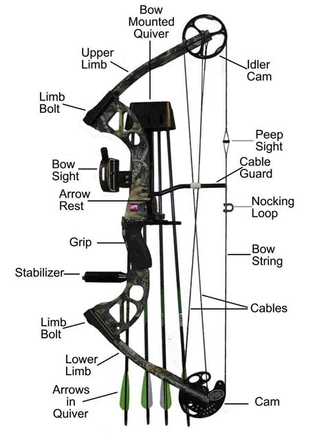 [click]how To Adjust Draw Weight On A Compound Bow