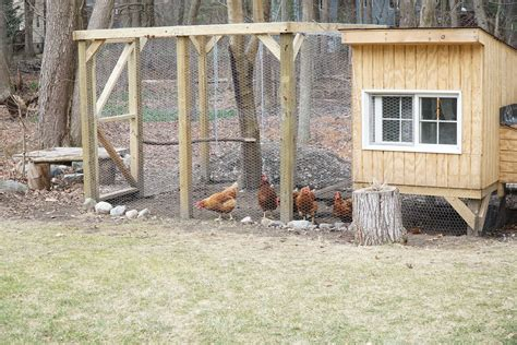 How To Build Chicken House And Yard