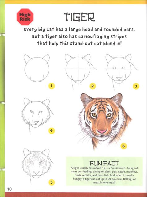 @ How To Draw Zoo Animals - Step-By-Step.