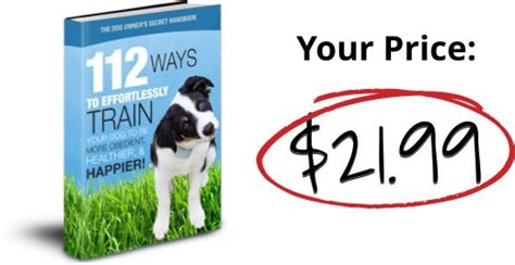 @ How To Effortlessly Transform Your Dog Into A More Obedient Healthier  Happier Pup .