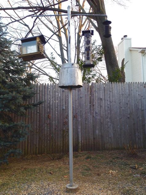 How To Make Bird Feeders Squirrel Proof