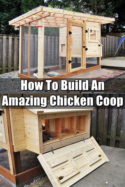 How To Make Your Chicken Coop Bigger
