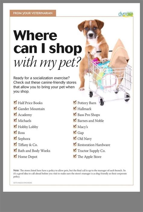 [pdf] How To Potty Train Your Puppy In 7 Days  Updated.