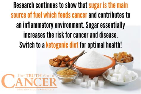 How The Ketogenic Diet Weakens Cancer Cells - The Truth About.