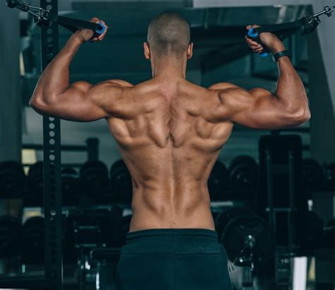 How To Increase Your Muscle Definition - Mens Journal.