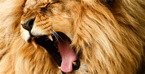 I Spent $191480.74 On Facebook Ads. Heres What I Learned. - Oberlo.