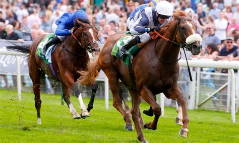 [pdf] Introduction - The British Horseracing Authority.