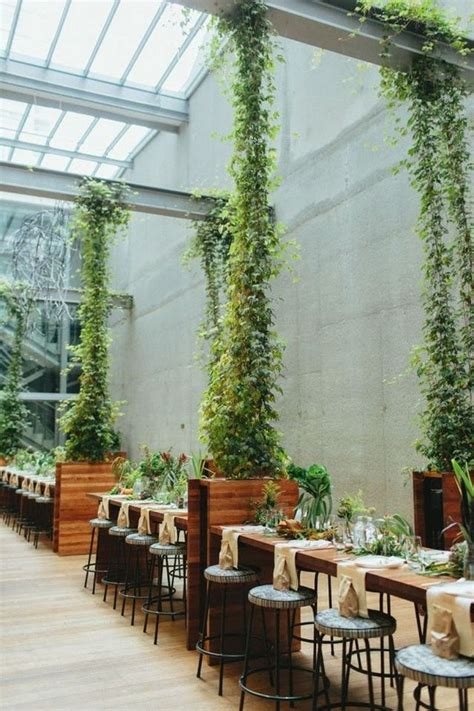 Indoor Climbing Plants With Flowers