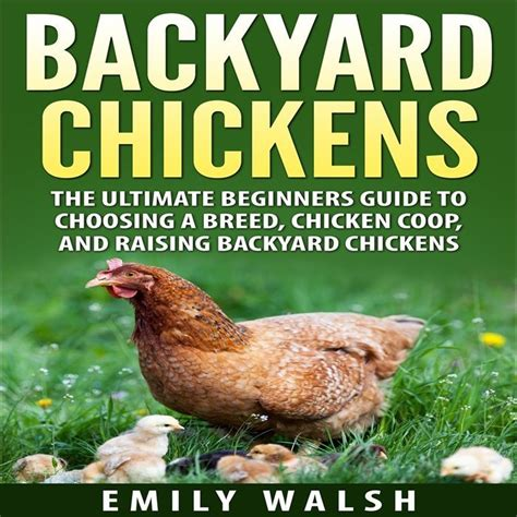 @ Keeping Chickens The Ultimate Beginners Guide .