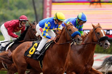 @ Lay Bet Winners - Betting On Horses To Lose - Reviews.