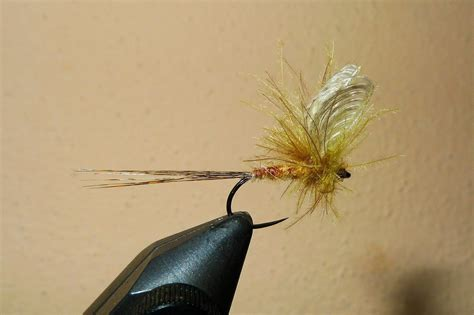 [pdf] Learn The Master Tricks For Tying Perfect Dry-Fly Wings .
