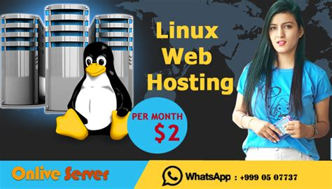 @ Linux Shared Web Hosting Services At Great Prices .