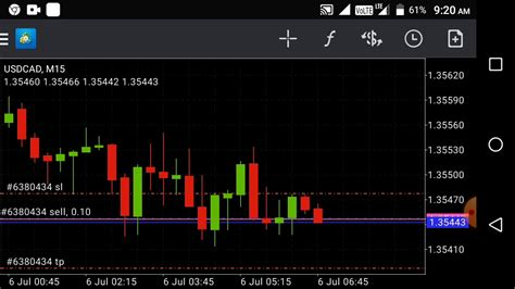Live Traders - Forex.