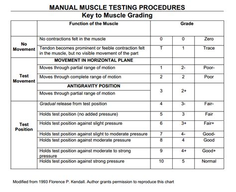 [pdf] Manual Muscle Testing Procedures For Mmt8 Testing.