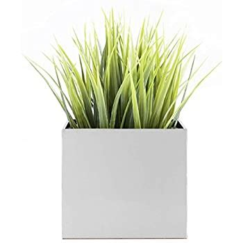 Madeira Cube Planter - Brushed Metal - Amazon Com.