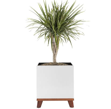 Madeira Cube Planter With Base By Nmn Designs  Nmn .