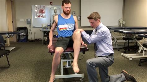 [pdf] Manual Muscle Testing Hip Flexors.