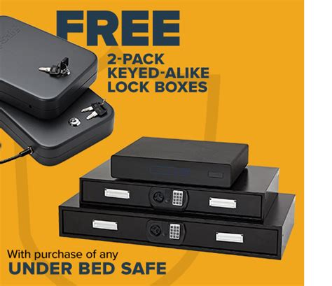 Modular Safes Specialty Safes Lock Boxes - Snapsafe.
