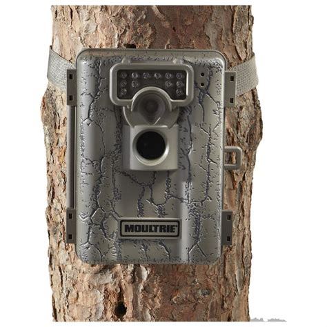Moultrie Game Cameras.