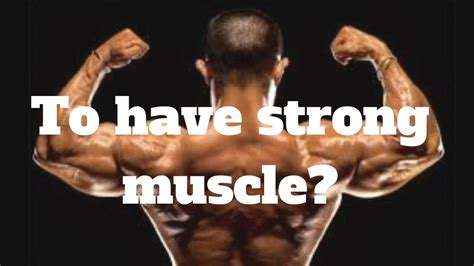 [pdf] Muscle Strength  Health Best Selling Offers.