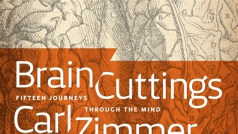My New Book-Ebook, That Is: Brain Cuttings - The Loom : The Loom.