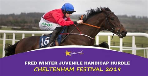 Neil Morrice Racing – Professional Horse Racing Analyst.