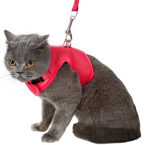 Nylon Cat Harness