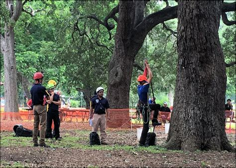 [click]online Lawn And Garden Care Courses  Courses For Success.